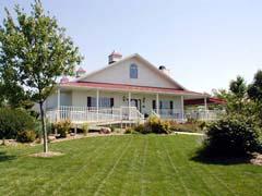 House at the vineyard