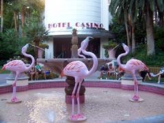 Entrance to the Flamingo